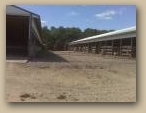 Cattle Confinement Exterior  » Click to zoom ->